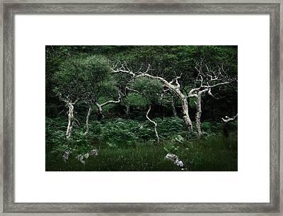 Windswept Framed Print by Warren Home Decor