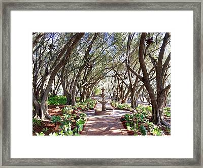 Windswept Framed Print by Russell Keating