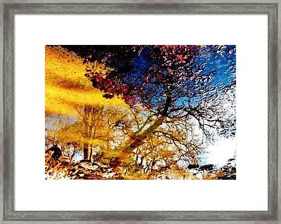 Windswept Framed Print by SeVen Sumet