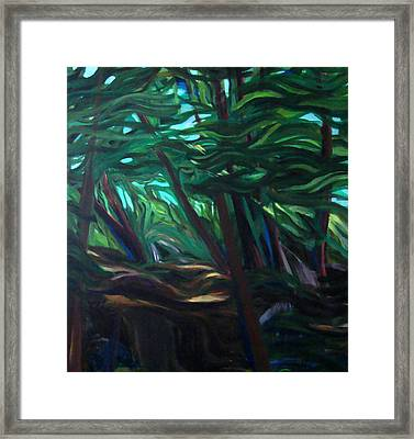 Windswept Framed Print by Susan Tilley