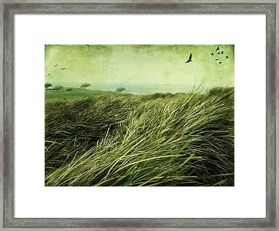 Framed Print featuring the digital art Windy Day On The Nut by Margaret Hormann Bfa