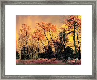 Framed Print featuring the photograph Windy  by Elfriede Fulda