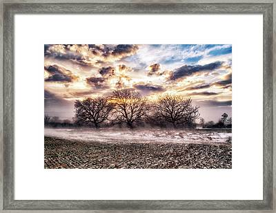Windy Stories  Framed Print