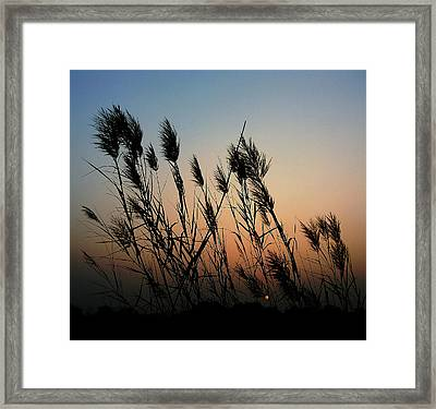 Windy Sunset Framed Print