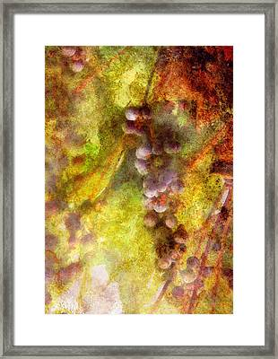 Wine - Grapes Framed Print by Mike Savad