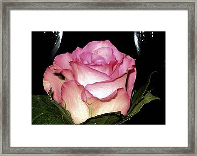 Wine And A Rose Framed Print by Lori Seaman