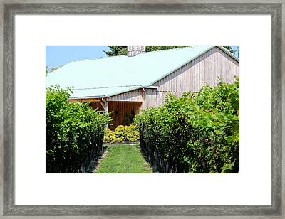 Wine Country Framed Print by Brian Manfra