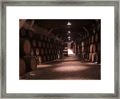 Wine Barrels Framed Print by Anastasy Yarmolovich