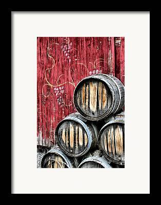 Vine Framed Prints