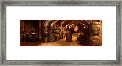 Wine Barrels In A Cellar, Buena Vista Framed Print