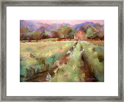 Wine Country 2 Framed Print by Joan  Jones
