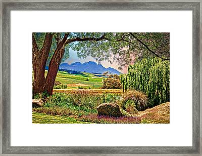 Wine Country Framed Print by Maria Coulson