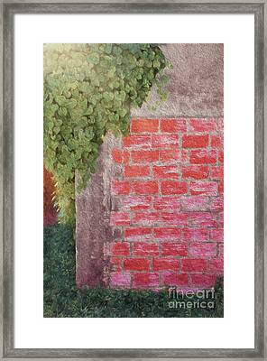 Wine Country Morning Framed Print by Darla Rae Norwood