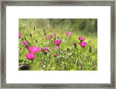 Wine Cups Framed Print