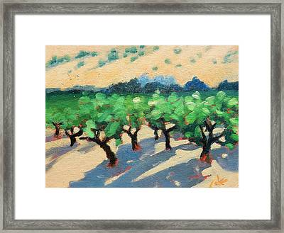 Framed Print featuring the painting Wine Habitat by Gary Coleman