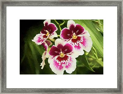 Wine Orchids- The Risen Lord Framed Print by Penny Lisowski