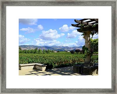 Framed Print featuring the photograph Wine Please by Corinne Rhode