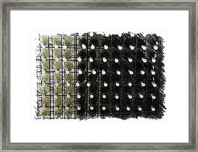 Wine Rack With Bottles Pa 01 Framed Print by Thomas Woolworth