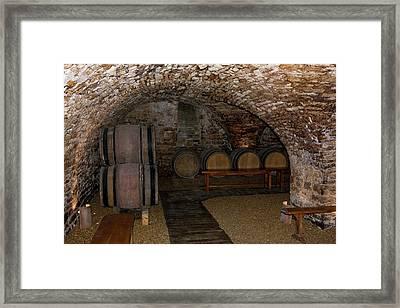 Wine Tasting Cellar Framed Print by Sally Weigand