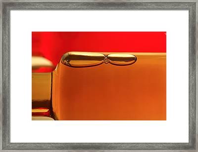 Wine Vinegar Framed Print