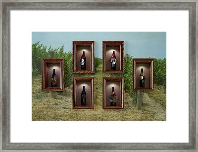 Winery Anyela's Vineyard Skaneateles New York Awards And Vineyard Framed Print by Thomas Woolworth