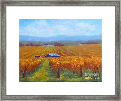 Winery Gold Framed Print by Carolyn Jarvis