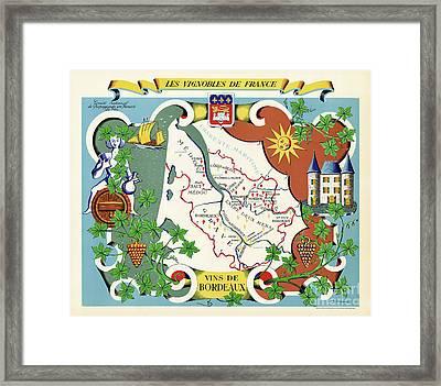 Wines Of Bordeaux Framed Print