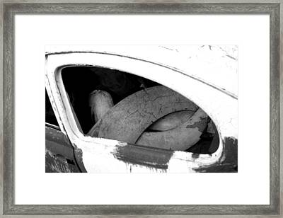 Wing And A Prayer Framed Print by Jez C Self