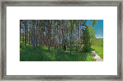 Wingate Prairie Veteran Acres Park Pines Crystal Lake Il Framed Print