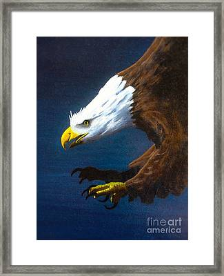 Winged Majesty Framed Print by Kevin Ballew