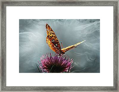 Framed Print featuring the photograph Winged Things by Jessica Brawley