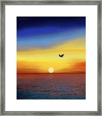 Winging Home Framed Print by Art Spectrum