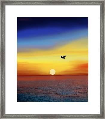 Winging Home Framed Print