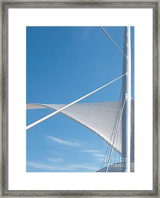 Winging It Framed Print by Ann Horn