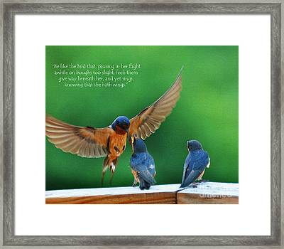 Wings Framed Print by Diane E Berry