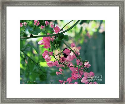 Framed Print featuring the photograph Wings by Megan Dirsa-DuBois