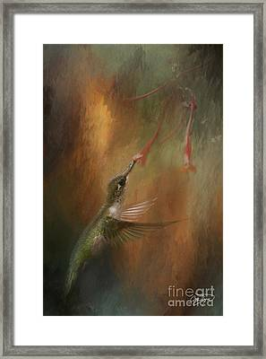 Wings Of An Angel Framed Print