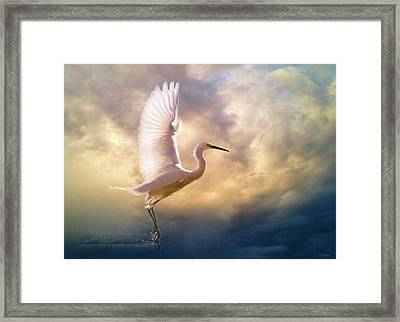 Wings Of Light Framed Print