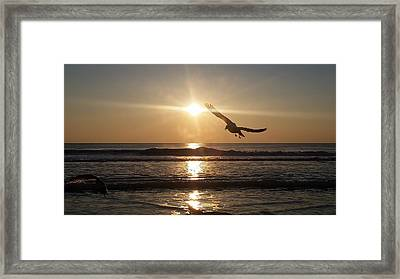 Wings Of Sunrise Framed Print