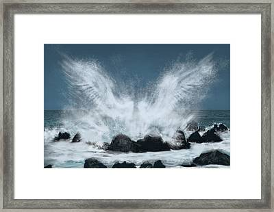 Wings Of The Sea Framed Print by Chad Glass