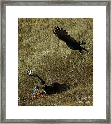 Wings Spread Wide Framed Print by JoAnn SkyWatcher