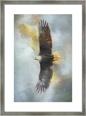Wingspan Bald Eagle Art Framed Print