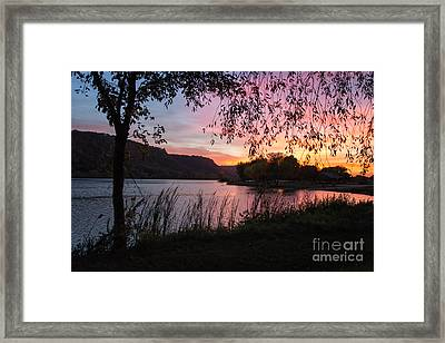 Winona Minnesota Pink Sunset With Branches Framed Print