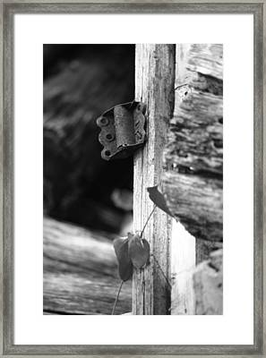 Winslow Cabin Door Detail Framed Print