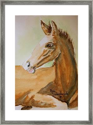 Winston Framed Print by Ann Sokolovich