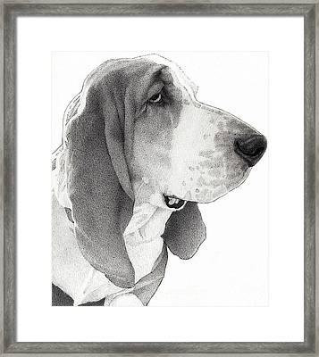 Winston Framed Print by Lorraine Zaloom