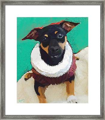 Winston Framed Print by Suzaine Smith