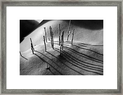 Winter 5 Framed Print