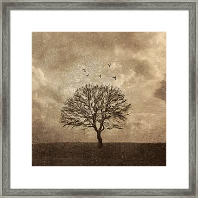 Winter Afternoon Framed Print