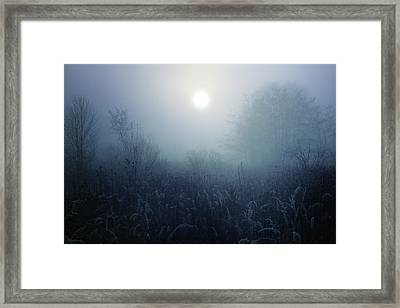 Winter Afternoon - Poland Framed Print by Cambion Art